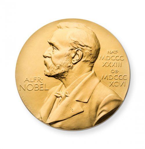 Nobel Peace Initiative | iWeb Magento eCommerce Agency