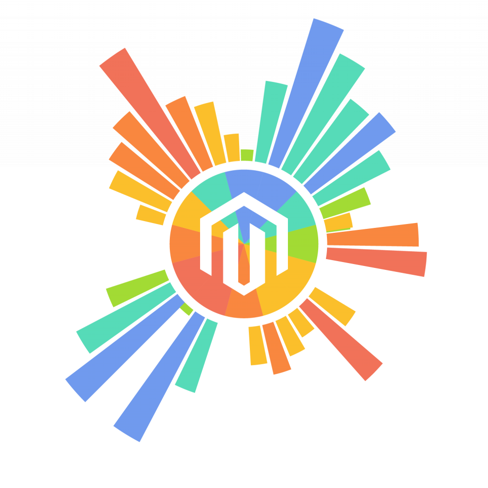 Magento Business Intelligence Essentials
